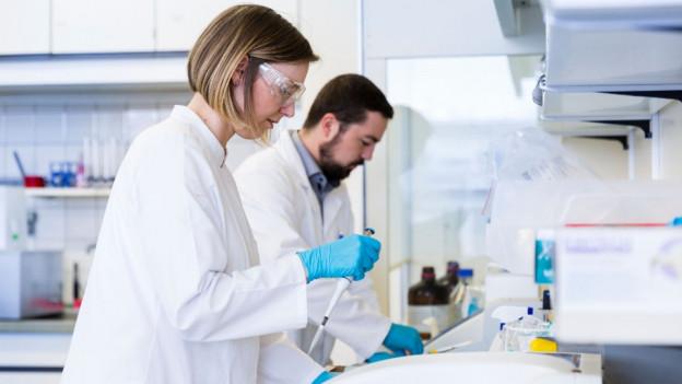 Forscher im Labor an der Arbeit