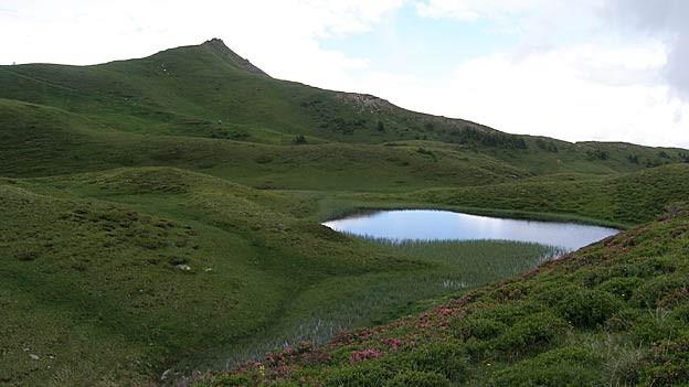 Im Gebiet Panüöl soll es bald zwei Liftanlagen geben.