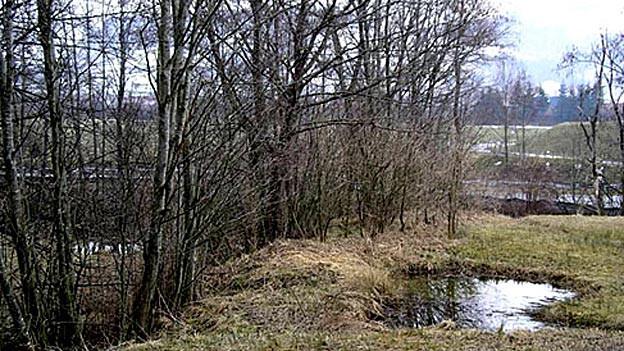Das Breitfeld dürfe als Laichgebiet nicht angetastet werden, so der NVS
