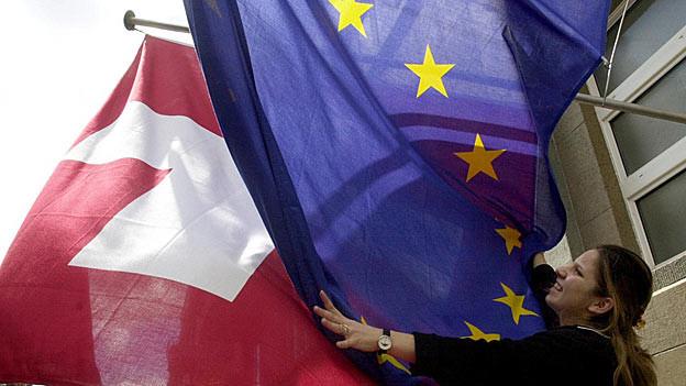 Ist es nun die EU- oder doch die Europarat-Flagge?