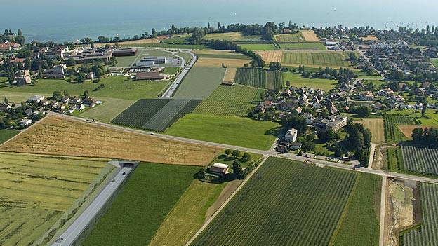 Eine Visualisierung der BTS-Linienführung bei Münsterlingen. Der Kanton Thurgau will Optimierungen prüfen.