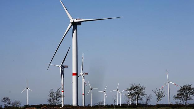Thurgauer Fachleute informieren sich über Windenergie in Deutschland.