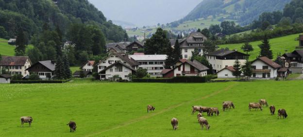 Weidende Kühe in der Gemeinde Glarus Süd, im Hintergrund Häuser.