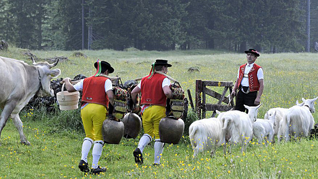 Die Alpfahrt wird im Appenzellerland immer ganz traditionell durchgeführt.