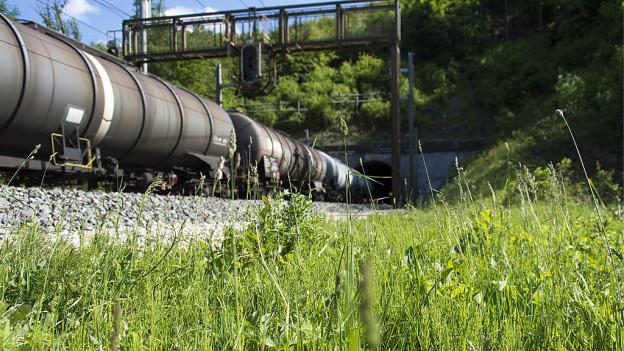 Ab 2020 rollen die Güterzüge leiser über die Schienen. Im Thurgau ist man nur halbwegs zufrieden damit.
