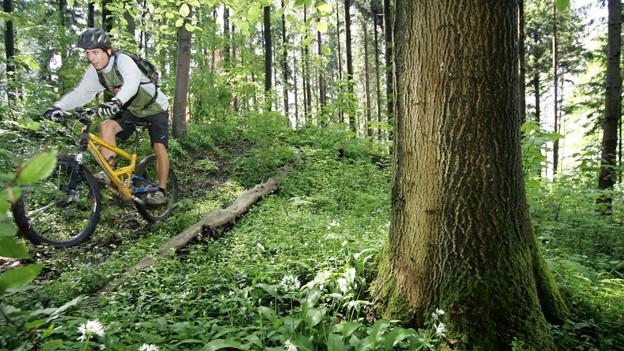 Das Toggenburg setzt auf die Mountainbikern.