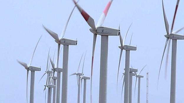 In rund fünf Jahren sollen auf dem Vorab Windturbinen stehen.