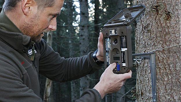 Ein Wildhüter installiert eine Fotofalle am Calanda.