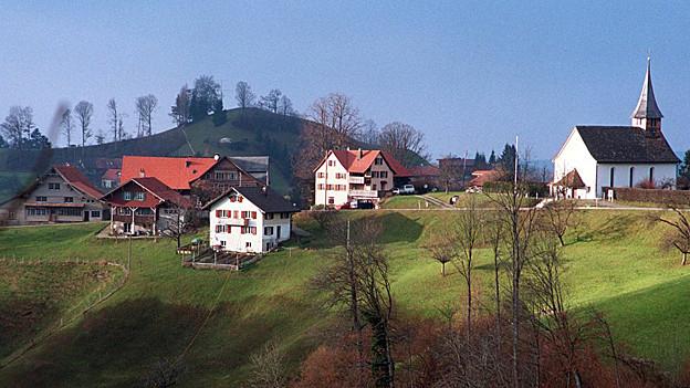 Sternenberg will die Stiftung Kolese nicht.