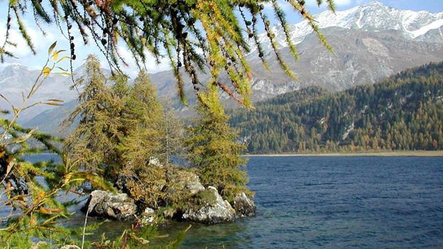 Der Weiler Isola liegt beim Silsersee.