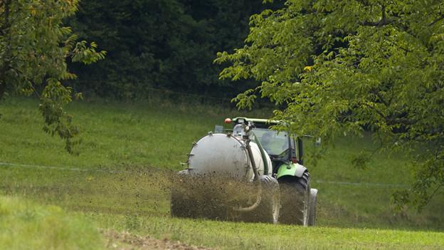 Laut dem St. Galler Bauernverband geht es bei der Masseneinwanderungsinitiative nicht um eine Landwirtschaftsvorlage.