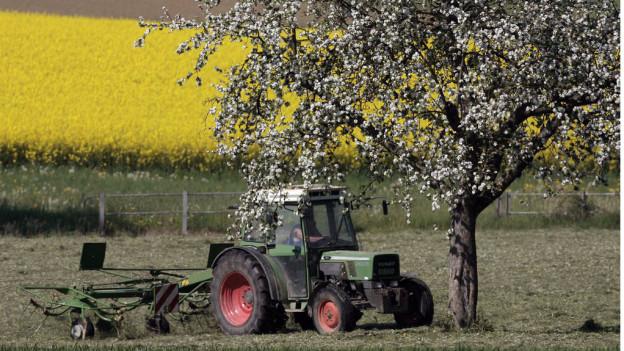 Für die Landwirtschaft gibt der Kanton Thurgau verhältnismässig viel Geld aus