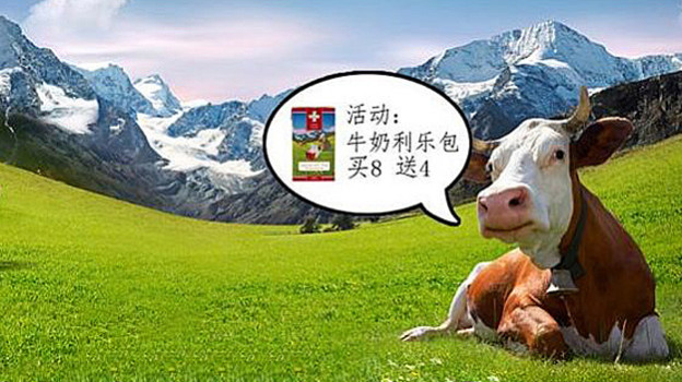 Eine Kuh auf einer Wiese.
