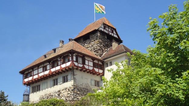 Das Schloss Frauenfeld ist zu klein für das Museum.