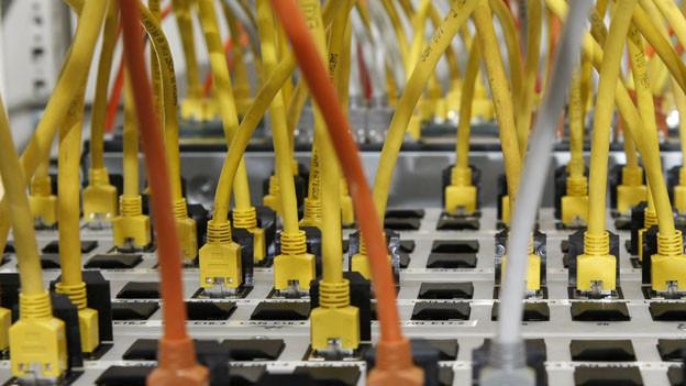 Kabel führen zu einem Server