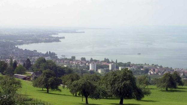 Keine einheitliche Stadt in der Rorschacher Bucht - dafür Verstimmung im Rorschacher Rathaus.