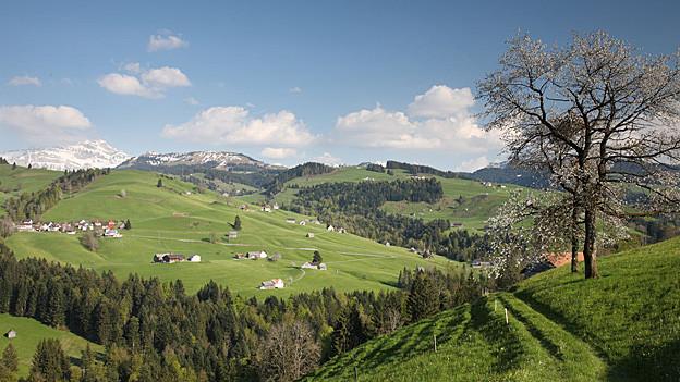 Regionaler Naturpark Neckertal: Im November wird entschieden, ob er umgesetzt werden soll.