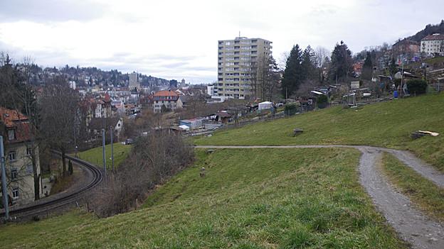 Blick auf Wiese oberhalb St. Gallen