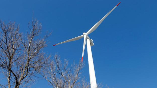 Wie gross der Windpark wird, soll eine Machbarkeitsstudie zeigen.