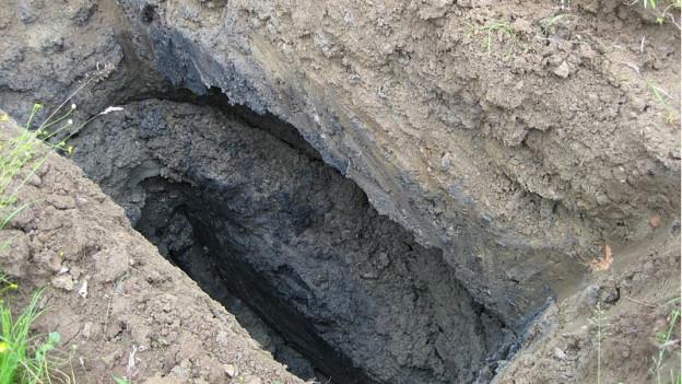 Mit Bodenprofilen wurde der Untergrund von Kreuzlingen untersucht: In der Nähe vom See wurde kein Kehricht deponiert.