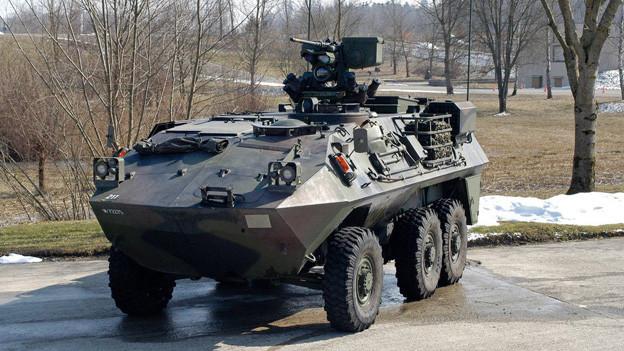 Der 17 Tonnen schwere «Piranha» wird von der Kantonspolizei Thurgau eingesetzt. Allerdings selten.