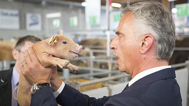 Didier Burkhalter hält ein Schweinchen