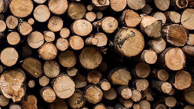 Holzstämme aufeinander gestapelt