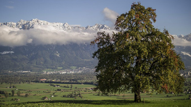 Der Blick von Gams aus auf das St. Galler Rheintal.