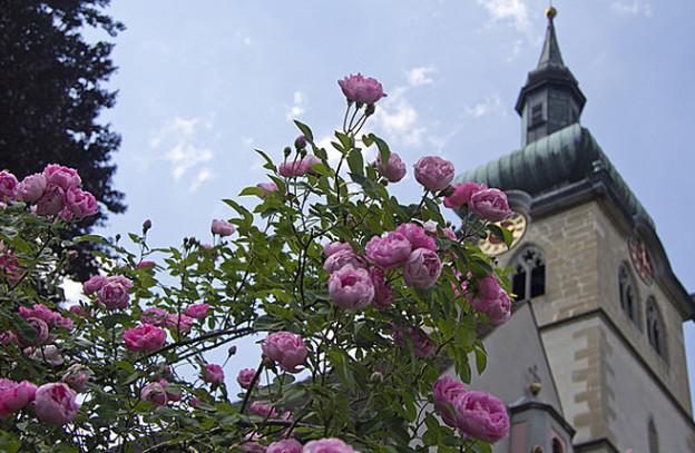 Die katholischen Pfarreien rund um Bischofszell werden Anfang Dezember zu einem Pastoralraum.