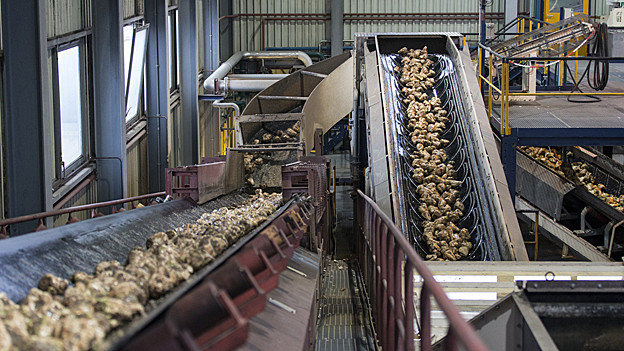 Zuckerfabrik Frauenfeld