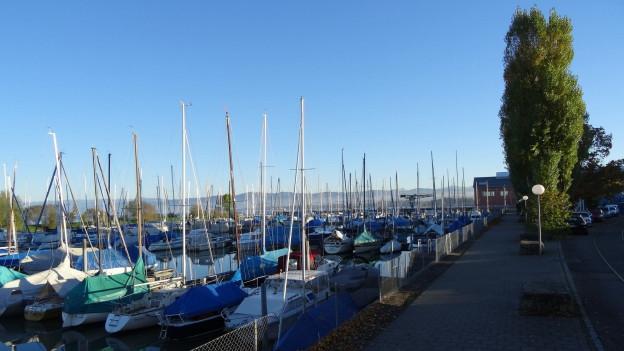 Schiffe am Hafen Romanshorn