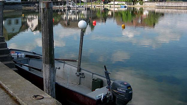 Die Entsorgung von Fischabfällen im Bodensee soll verboten werden