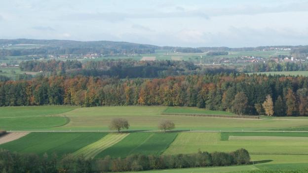 Grünflächen prägen das Thurgauer Landschaftsbild.