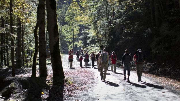 Zu den Bad Ragazer Tourismus-Attraktionen gehört die Taminaschlucht.