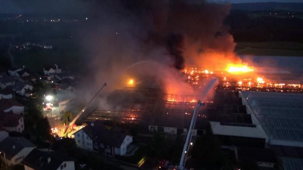 Die Feuerwehr beim Löschen des Brandes am 6. September 2013.