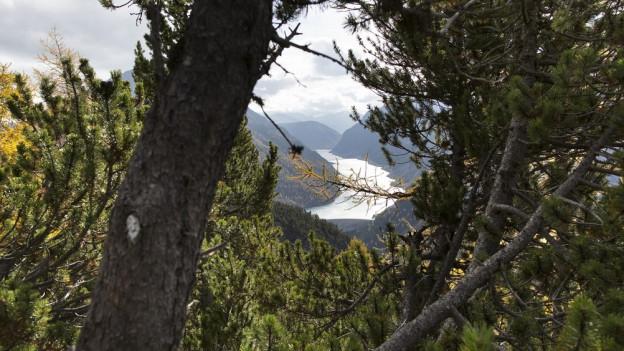 Graubünden warnt vor Waldbrandgefahr