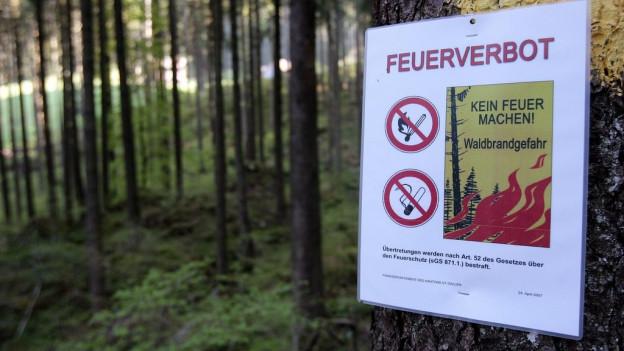 Kein Feuerverbot in der Ostschweiz, Waldbrandgefahr in Graubünden