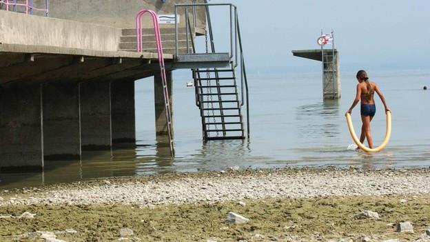 Trockenheit am Bodensee