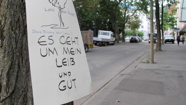 Eine Botschaft an Stadtrat Tom Leibundgut an einem der Bäume, die gefällt werden.