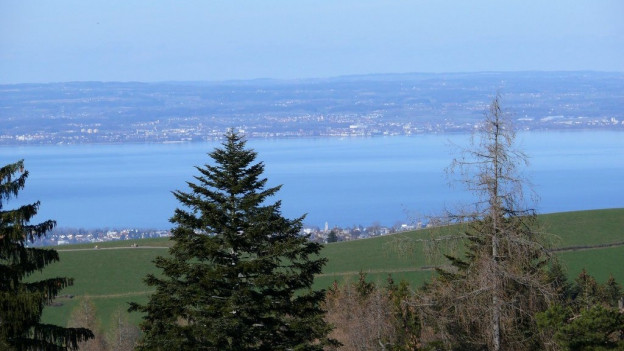 Der Blick auf den Bodensee macht die Region attraktiv zum Wohnen