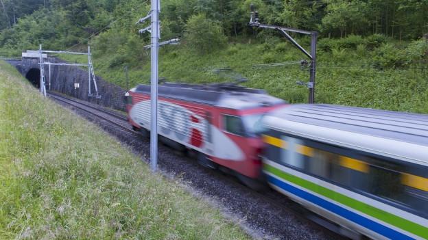 Wer ist für die Bahnböschungen zuständig? Die SOB will klare Verhältnisse schaffen und die Pachtverträge anpassen.