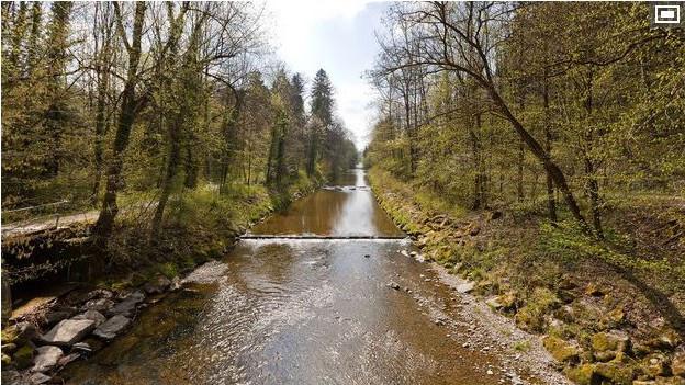 Betroffen vom Wasserentnahmeverbot waren unter anderem Bauern entlang der Murg bei Frauenfeld.