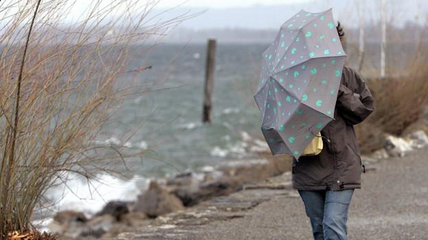 Befürworter eines durchgängigen Seewegs am Bodensee müssen für ihr Anliegen kämpfen.