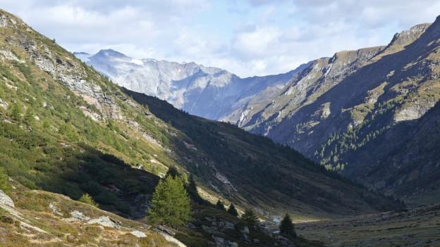 Im Kanton Graubünden wird ein neuer Nationalpark geplant.