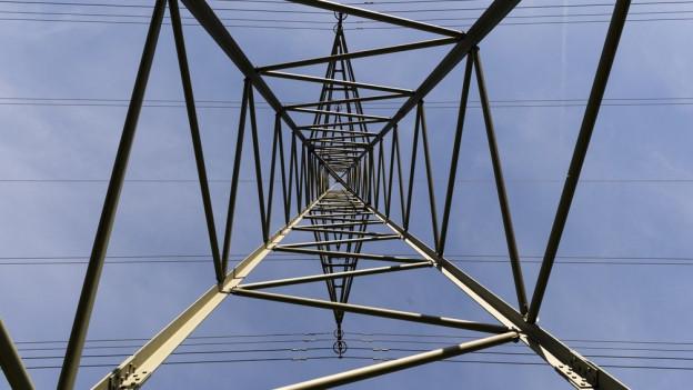 Ein Ast legte den Strom lahm.