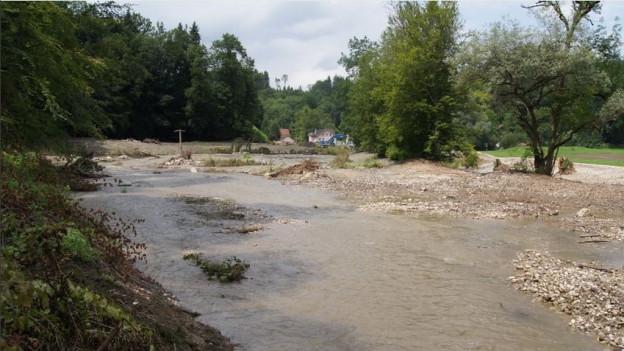 Einige der Laichplätze und Biotope sind in schlechtem Zustand und bedrohen die Amphibien