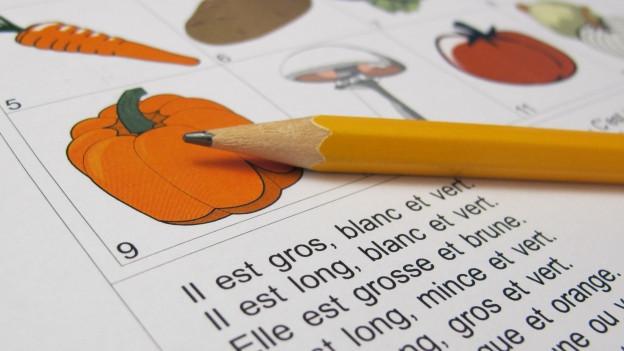 Bleistift liegt auf einem Schulblatt mit französischen Wörtern.