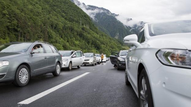 Autobahnzubringer Rorschach: Grünes Licht und Widerstand