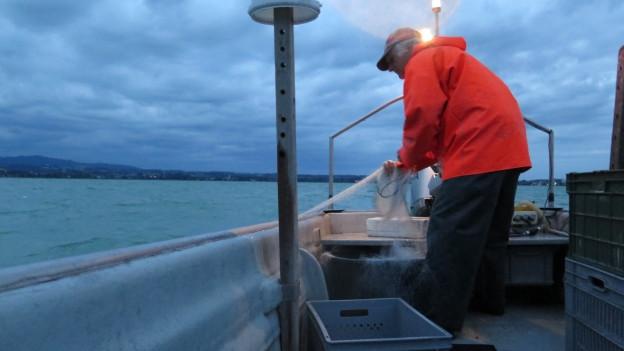 Berufsfischer kämpfen um ihre Existenz.