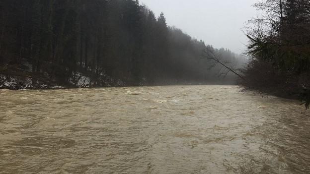 Hochwasser an der Sitter. Noch mag der Fluss das Wasser führen.